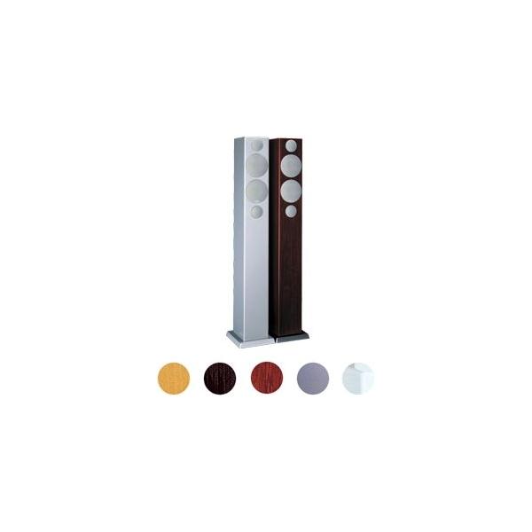 Monitor Audio Radius R270 HD Altavoz de suelo, 2 vias. Puerto reflex frontal. 8